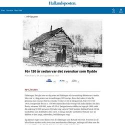 För 130 år sedan var det svenskar som flydde - Hallandsposten