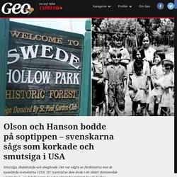 Svenskarna bodde på soptippen Swede Hollow i Minnesota