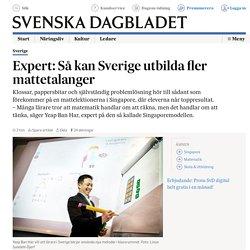 Expert: Så kan Sverige utbilda fler mattetalanger