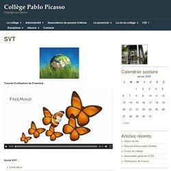 College Pablo Picasso