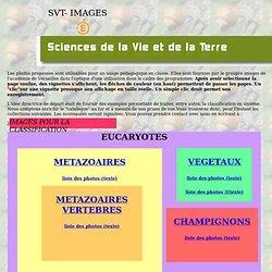 SVT-IMAGES SIXIEME