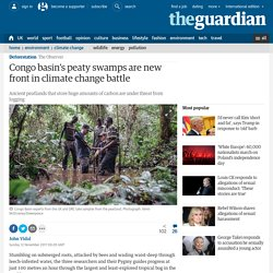 Congo basin's peaty swamps are new front in climate change battle