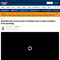 Swedish city covers park in chicken poo to stop covidiots from partying