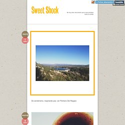 Sweet Shock