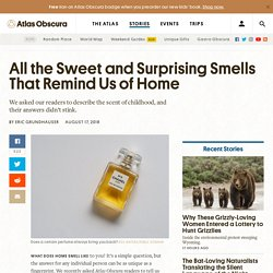 All the Sweet and Surprising Smells That Remind Us of Home