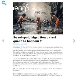 Sweetspot, ikigai, flow : c'est quand le bonheur ?