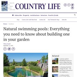 Natural swimming pools: Everything you need to know about building one in your garden
