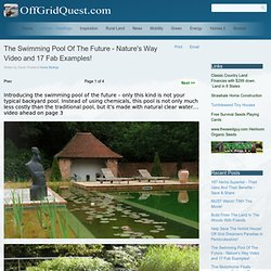 The Swimming Pool Of The Future - Nature's Way Video and 17 Fab Examples!