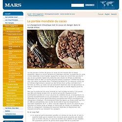 MARS - La portée mondiale du cacao - Le changement climatique met le cacao en danger dans le monde entier.