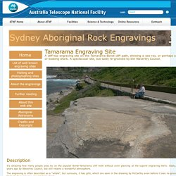 Sydney Aboriginal Rock Engravings