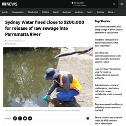 Sydney Water fined close to $200,000 for release of raw sewage into Parramatta River