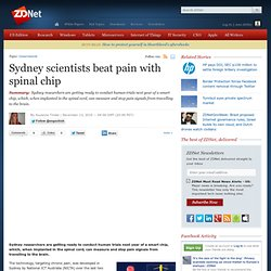 Sydney scientists beat pain with spinal chip - Hardware - News