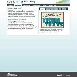Syllabus bites: Visual literacy - Visual texts