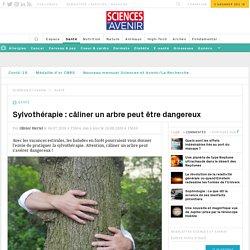 Sylvothérapie : câliner un arbre peut être dangereux