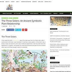 The Three Sisters: An Ancient Symbiotic Plant Relationship
