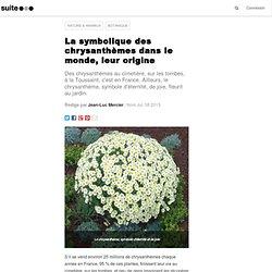 La symbolique des chrysanthèmes dans le monde, leur origine