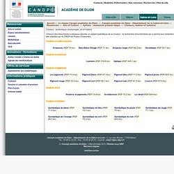Couleur : symbolique, physiologie, art et histoire - Canopé académie de Dijon