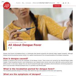 Causes & Symptoms of Dengue Fever – Good knight