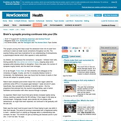 Brain's synaptic pruning continues into your 20s - health - 17 August 2011