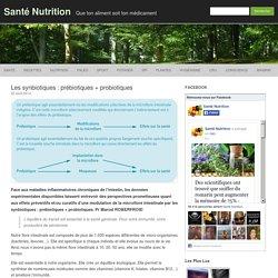 Les synbiotiques : prébiotiques + probiotiques