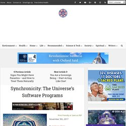 Synchronicity: The Universe's Software Programs