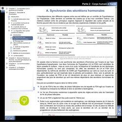 Partie 2 : Corps humain et Santé - A. Synchronie des sécrétions hormonales
