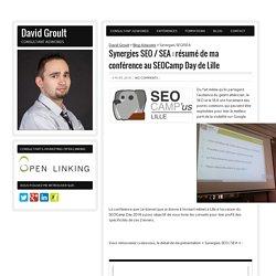 Synergies SEO SEA - Optimiser les complémentarités SEO et Adwords
