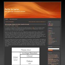 NAS Synology: Debian en chroot, apache et mysql