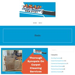 Synopsis On Carpet Cleaning Services