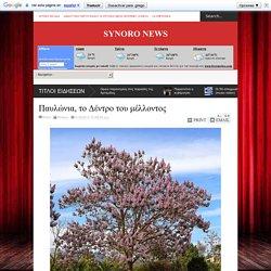 Παυλώνια, το Δέντρο του μέλλοντος