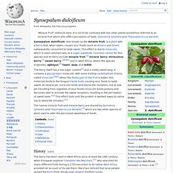 Synsepalum dulcificum - Wikipedia, the free encyclopedia