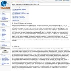 Synthèse sur les chauves-souris — WikiPistes