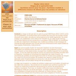 Synthèse sonore pour les jeux : Synthèse modale à différents niveaux de détails pour les solides en vibration (Master 2012 2013)