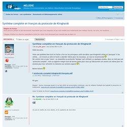 Synthèse complète en français du protocole de Klinghardt