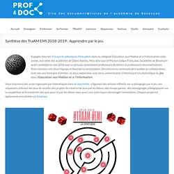 Synthèse des TraAM EMI 2018-2019 : Apprendre par le jeu