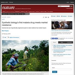 NATURE 23/02/16 Synthetic biology's first malaria drug meets market resistance