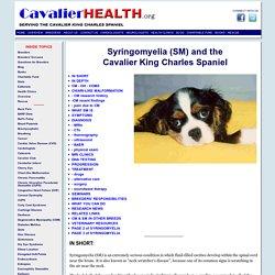 Syringomyelia (SM) and the Cavalier King Charles Spaniel