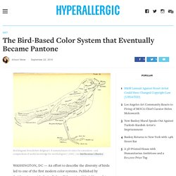 The Bird-Based Color System that Eventually Became Pantone