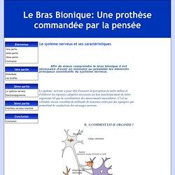Le système nerveux et ses caractéristiques - Le Bras Bionique: Une prothèse commandée par la pensée