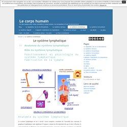 Le système lymphatique « Le corps humain