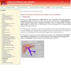 Système porte - Centre de référence des maladies rares du foie, Hôpital Beaujon