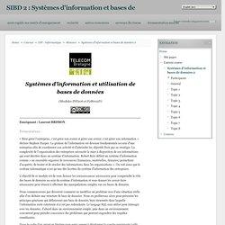 Cours: SIBD 2 : Systèmes d'information et bases de données
