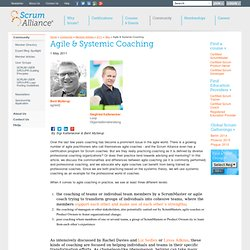 Agile & Systemic Coaching