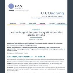 Le coaching et l'approche systémique des organisations – UCOaching