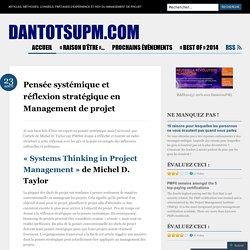 Pensée systémique et réflexion stratégique en Management de projet