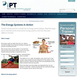 The Energy Systems in Action — iPT Australia Limited