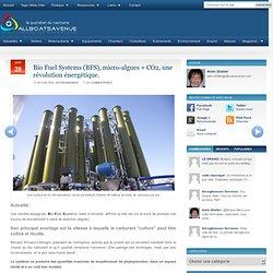 Bio Fuel Systems (BFS), micro-algues + CO2, une révolution énergétique