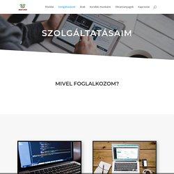 Szolgáltatásaink - WEBVID FUSION