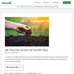 Đất Trồng Cây Và Cách Cải Tạo Đất Trồng - AZ Farming