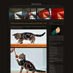 Tabby-Cat born with a name across its fur that says… Cat? « Dark In The Boy